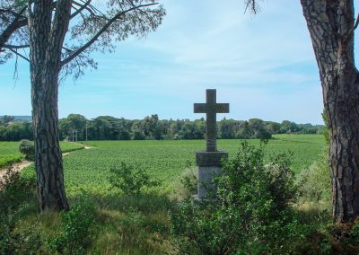 Cross of the domain of Pierrefont in Lagamas (34)