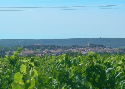 View of Gignac from the vineyards on the terrace of the Pierrefont estate (34)